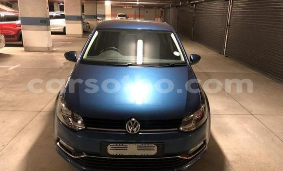 Buy Used Volkswagen Polo Blue Car in Hlotse in Leribe