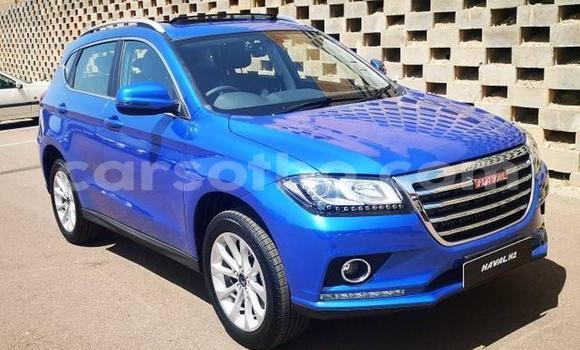 Buy Used Haval H2 Blue Car in Maseru in Maseru