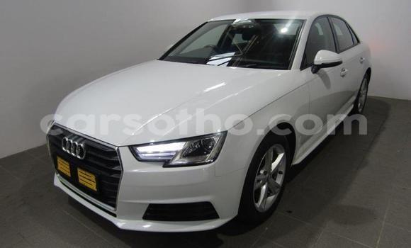 Buy Used Audi A4 White Car in Maputsoa in Leribe