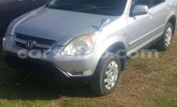 Buy Used Honda CR–V Silver Car in Maseru in Maseru
