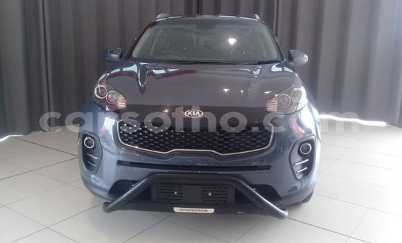 Buy Used Kia Sportage Blue Car in Hlotse in Leribe