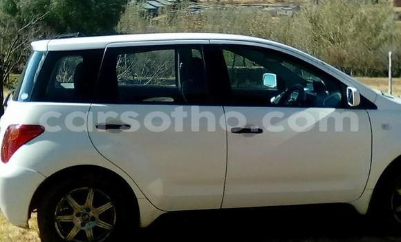 Buy Used Toyota IST White Car in Maseru in Maseru