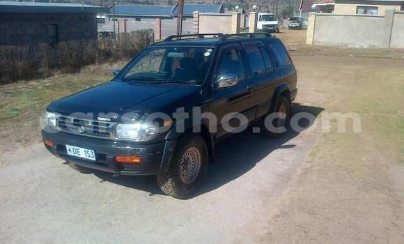 Buy Used Nissan Terrano Black Car in Maseru in Maseru