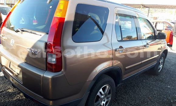 Buy Used Honda CR-V Other Car in Maseru in Maseru