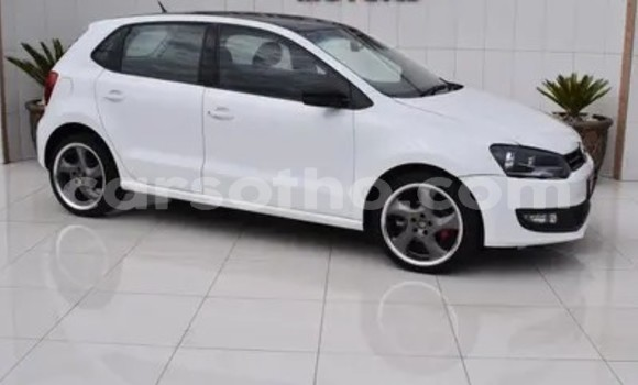 Buy Used Volkswagen Polo White Car in Butha Buthe in Butha-Buthe