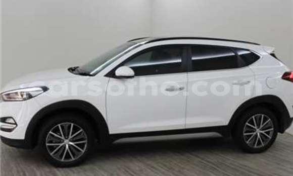 Buy Used Kia Sportage White Car in Maseru in Maseru