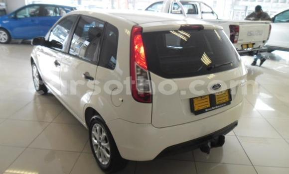 Buy Used Ford Ikon White Car in Maseru in Maseru