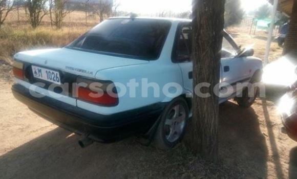 Buy Used Toyota Corolla White Car in Maseru in Maseru