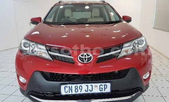 Buy Used Toyota RAV4 Other Car in Butha–Buthe in Thaba-Tseka