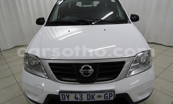 Buy Used Nissan NP 300 White Car in Maseru in Maseru