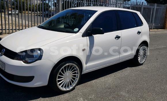 Buy Used Volkswagen Polo White Car in Maseru in Maseru