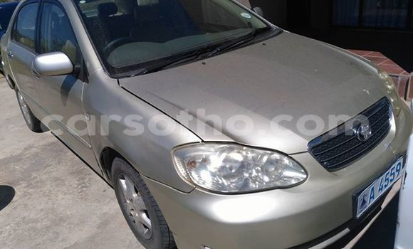 Buy Used Toyota Corolla Silver Car in Maseru in Maseru