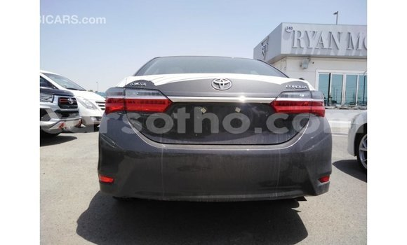 Buy Import Toyota Corolla Other Car in Import - Dubai in Maseru