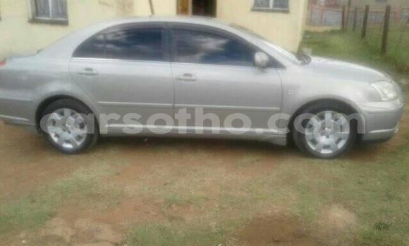 Buy Used Toyota Avensis Silver Car in Maseru in Maseru