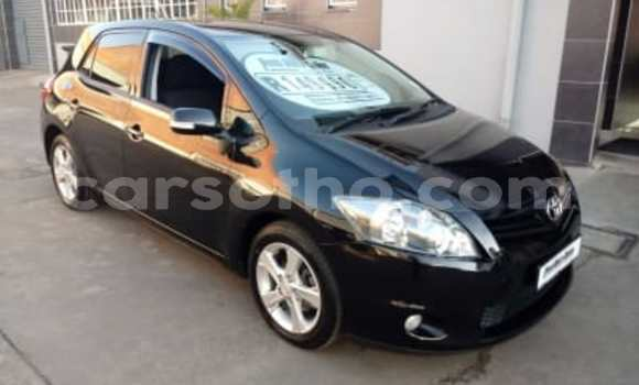 Buy Used Toyota Auris Black Car in Maseru in Maseru