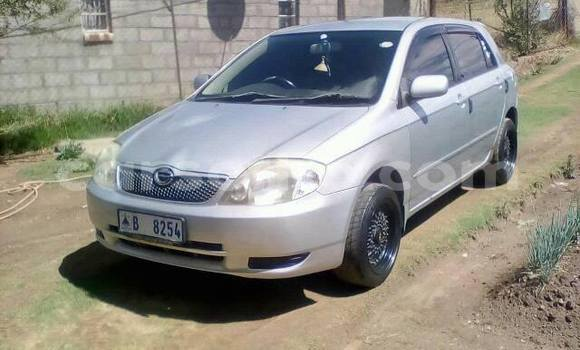 Buy Used Toyota Runx Silver Car in Maseru in Maseru
