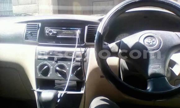 Buy Used Toyota Runx Silver Car in Maseru in Maseru