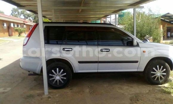 Buy Used Nissan X-Trail Silver Car in Maseru in Maseru