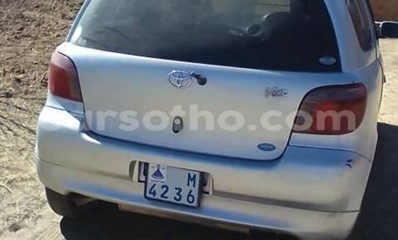 Buy Used Toyota Vitz Silver Car in Maseru in Maseru