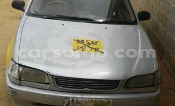 Buy Used Toyota Corolla Silver Car in Maseru in Maseru
