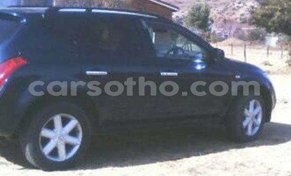 Buy Used Nissan Murano Black Car in Maseru in Maseru
