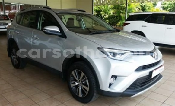 Buy Used Toyota RAV4 Silver Car in Maseru in Maseru