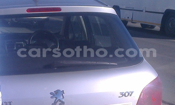 Buy Used Peugeot 307 Silver Car in Maseru in Maseru