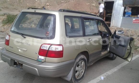 Buy New Subaru Outback Beige Car in Maseru in Maseru