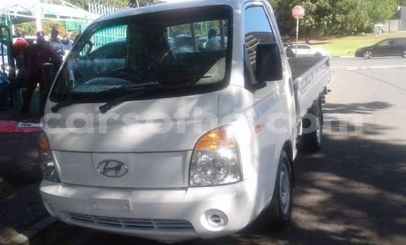 Buy Used Hyundai H200 White Truck in Butha Buthe in Butha-Buthe