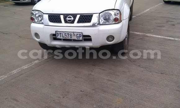 Buy Used Nissan Hardbody White Car in Butha-Buthe in Thaba-Tseka