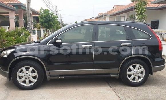 Buy Used Honda CR-V Black Car in Maseru in Maseru