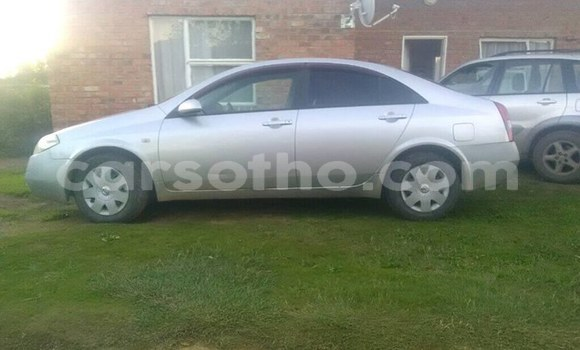 Buy Used Nissan Primera Silver Car in Maseru in Maseru