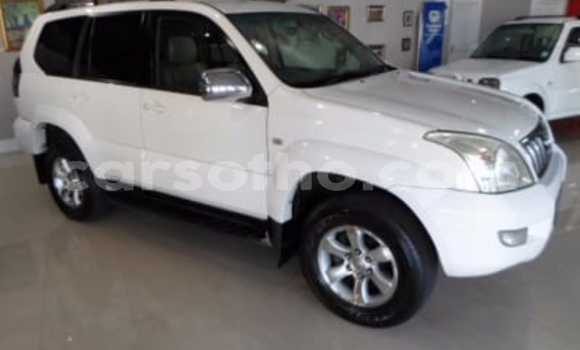 Buy Used Toyota Land Cruiser Prado White Car in Mafeteng in Mafeteng