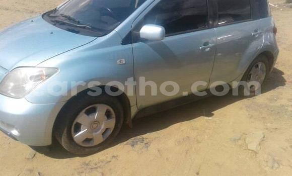 Buy Used Toyota IST Other Car in Mafeteng in Mafeteng