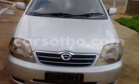 Buy Used Toyota Corolla Silver Car in Maputsoe in Leribe