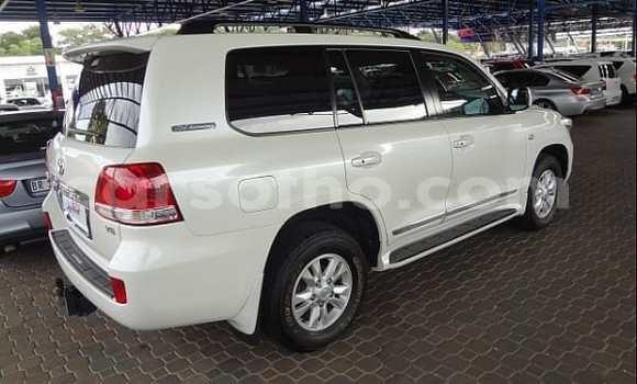Buy Used Toyota Land Cruiser White Car in Maseru in Maseru