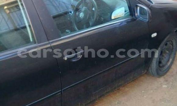Buy Used Volkswagen Polo Black Car in Maseru in Maseru