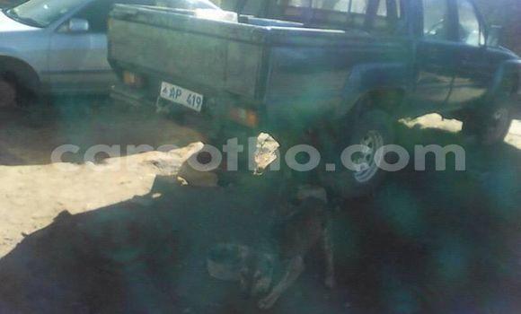 Buy Used Toyota Pickup Other Car in Maseru in Maseru