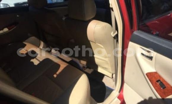 Buy Used Toyota Corolla Red Car in Teyateyaneng in Berea