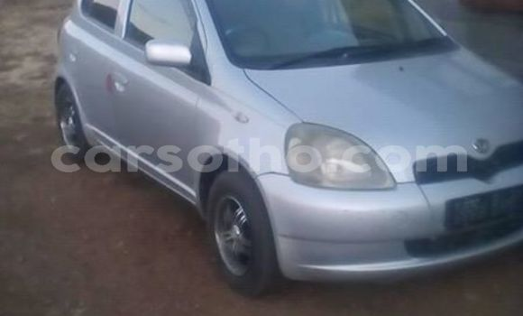 Buy Used Toyota Vitz Silver Car in Maseru in Maseru
