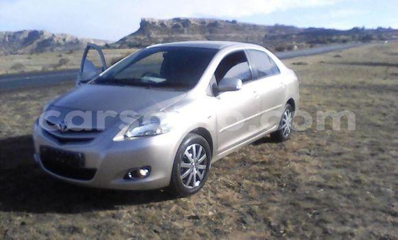 Buy Used Toyota Vios Silver Car in Maseru in Maseru