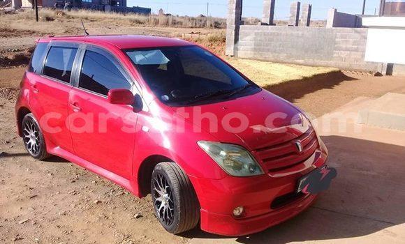 Buy Used Toyota IST Red Car in Maseru in Maseru
