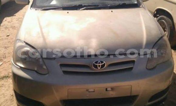 Buy Used Toyota Runx Other Car in Maseru in Maseru
