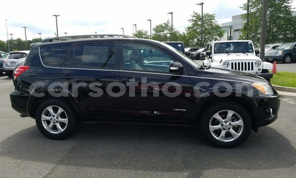 Buy Used Toyota RAV4 Black Car in Peka in Leribe