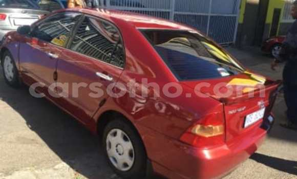 Buy Used Toyota Corolla Red Car in Maputsoa in Leribe