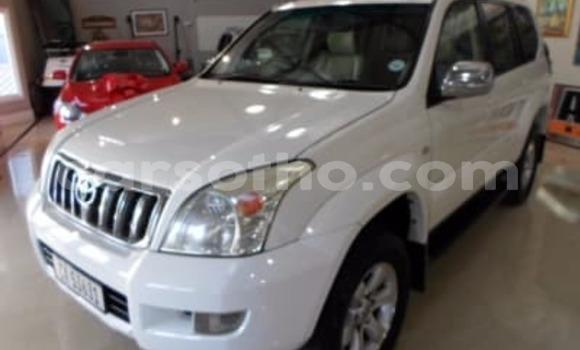 Buy Used Toyota Land Cruiser Prado White Car in Mokhotlong in Berea