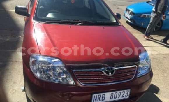 Buy Used Toyota Corolla Red Car in Mokhotlong in Berea