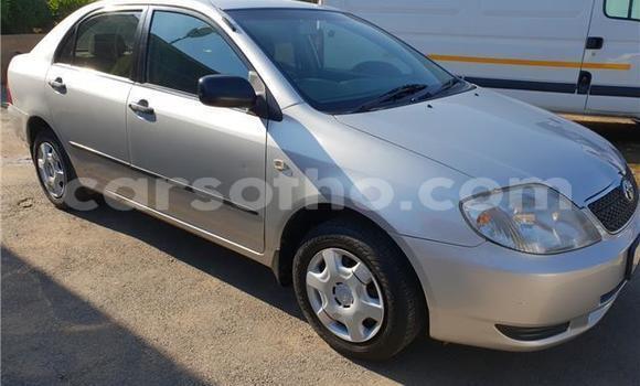 Buy Used Toyota Corolla Silver Car in Roma in Maseru