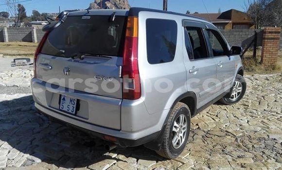 Buy Used Honda CR–V Silver Car in Maseru in Maseru