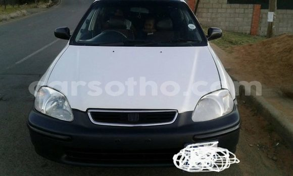 Buy Used Honda Civic White Car in Maseru in Maseru